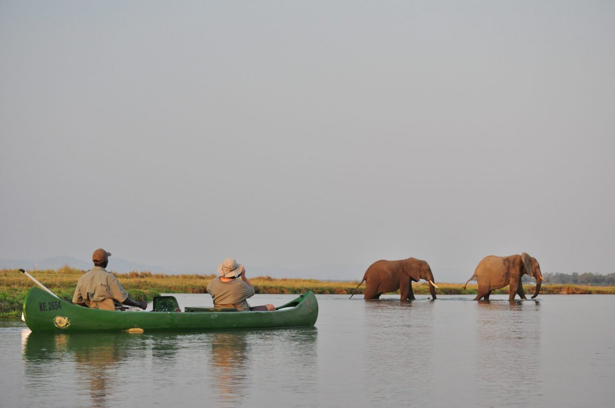 SAFARI CANOE MANA POOLS ZIMBABWE
